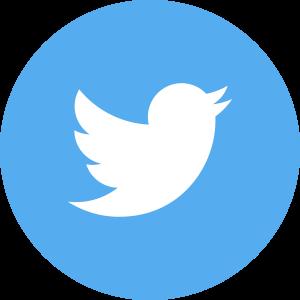 Twitter Icon Flat