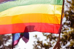 rainbow flag outside trees